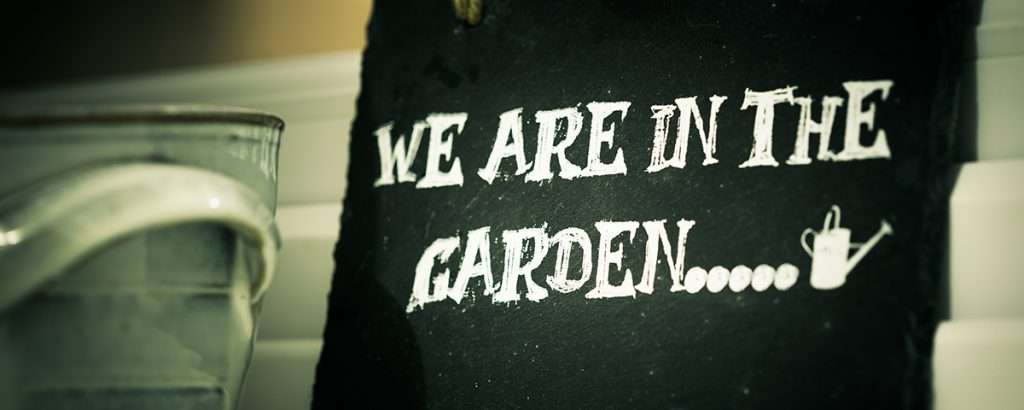 The Surprising Health Benefits of Gardening
