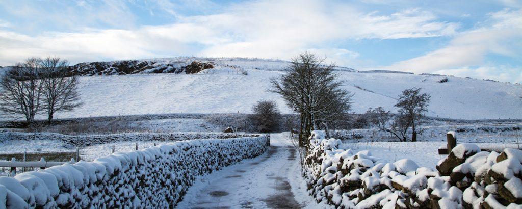 5 Wheelchair Friendly Winter Walks
