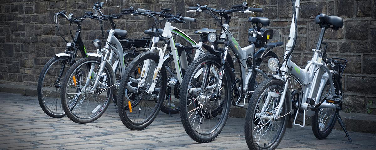 Fenetic Electric Bike Family